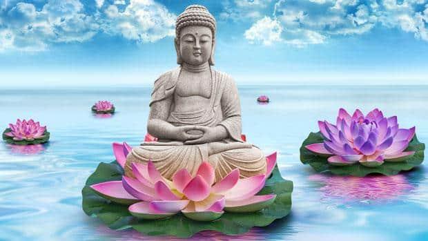 L'attribut alt de cette image est vide, son nom de fichier est bouddha-lotus2-1.jpeg.