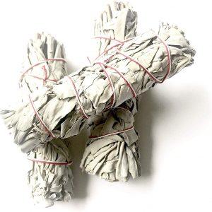 Sauge blanche fagot 40 grammes